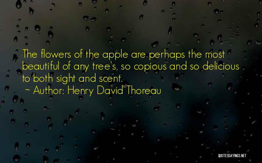 Henry David Thoreau Quotes 1968430