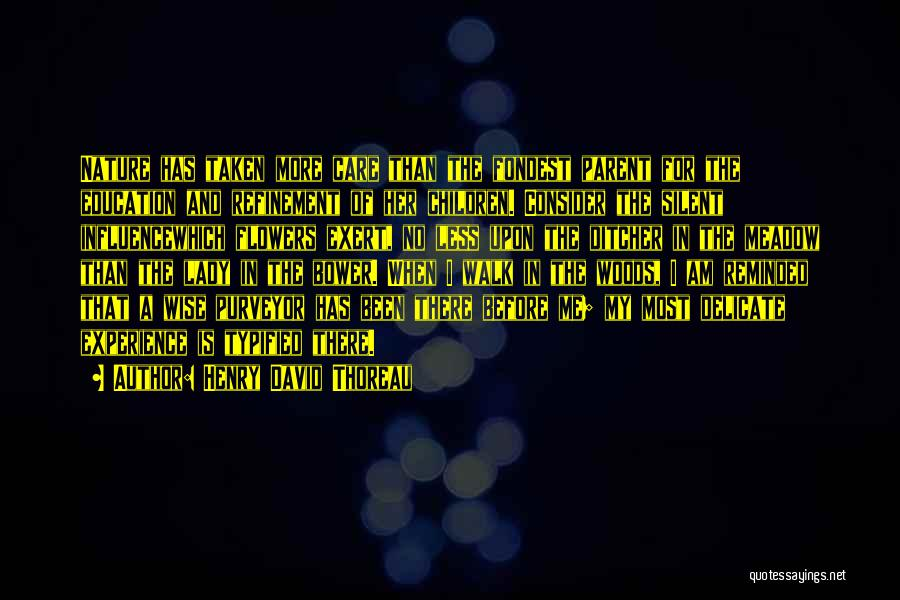 Henry David Thoreau Quotes 2053696