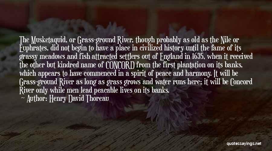 Henry David Thoreau Quotes 2061925