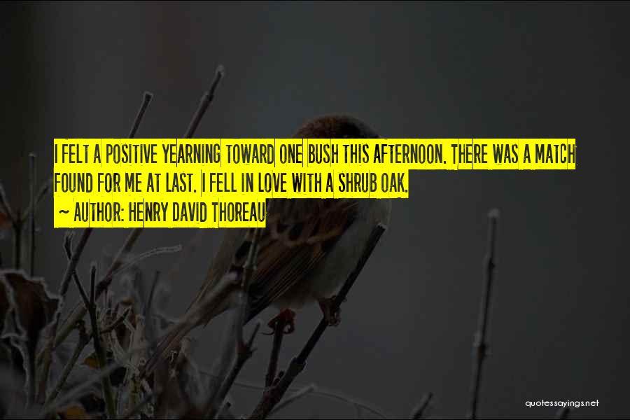 Henry David Thoreau Quotes 2104360