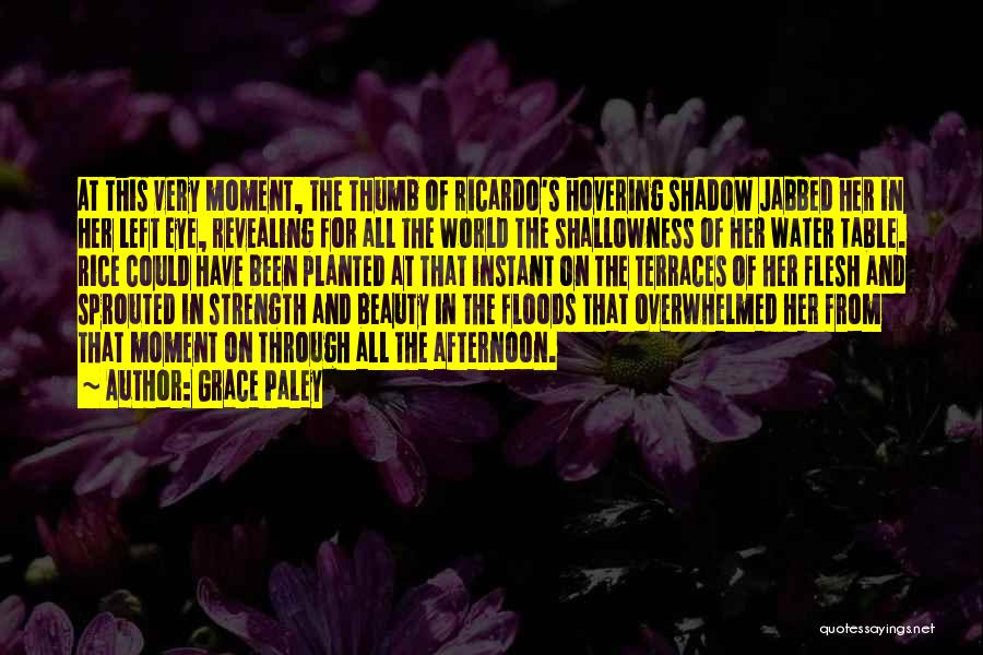 Her Beauty Quotes By Grace Paley