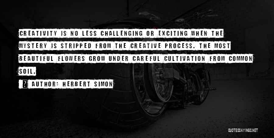 Herbert Simon Quotes 1452007