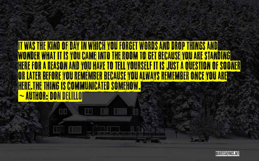 Here For A Reason Quotes By Don DeLillo