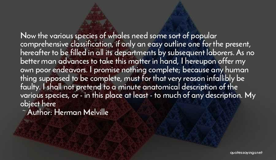 Here For A Reason Quotes By Herman Melville
