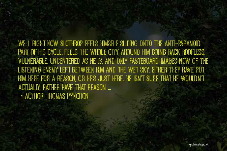 Here For A Reason Quotes By Thomas Pynchon