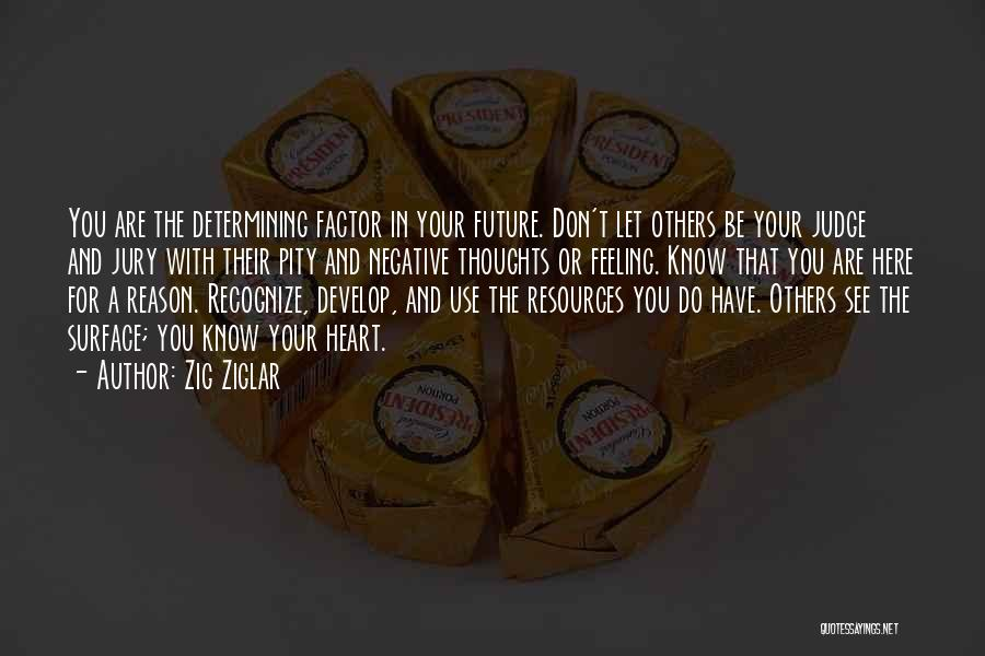 Here For A Reason Quotes By Zig Ziglar