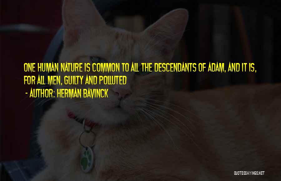 Herman Bavinck Quotes 2120550