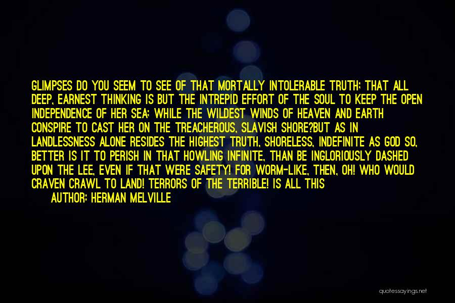 Herman Melville Quotes 1216578