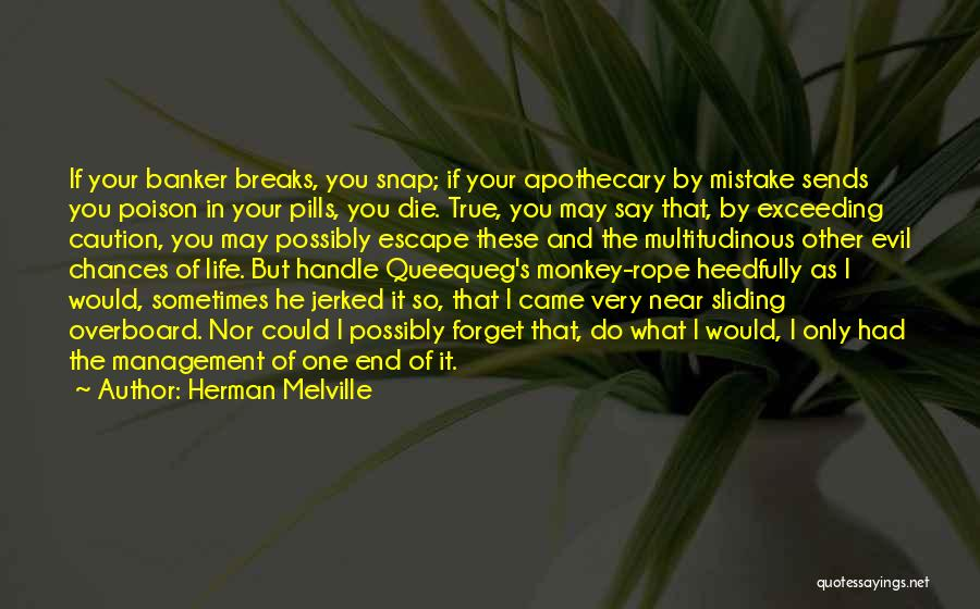 Herman Melville Quotes 2144672