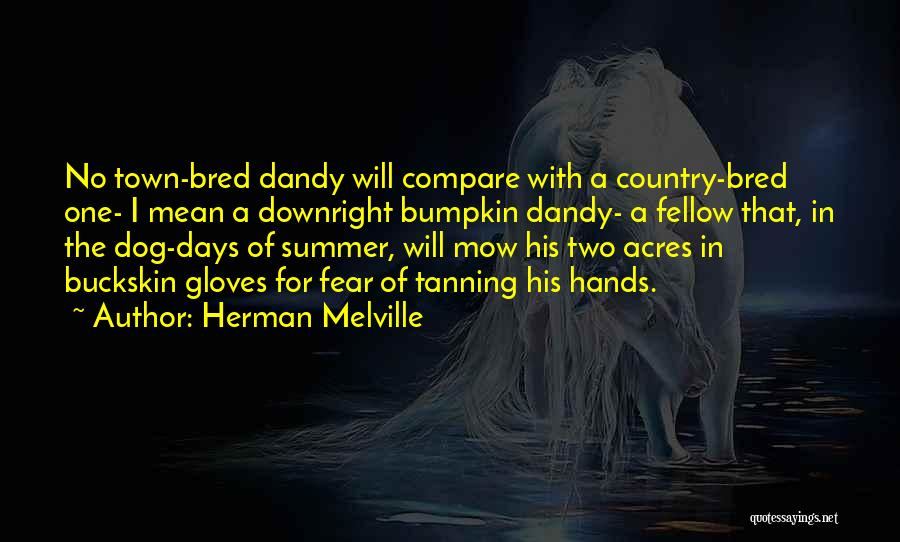 Herman Melville Quotes 2183176