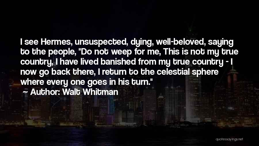 Hermes Quotes By Walt Whitman