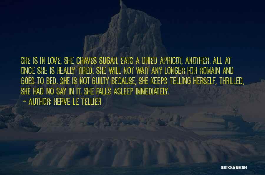 Herve Le Tellier Quotes 1598476