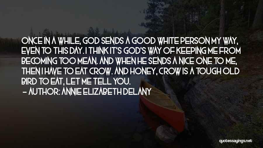 He's Too Nice Quotes By Annie Elizabeth Delany