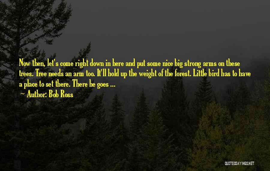 He's Too Nice Quotes By Bob Ross