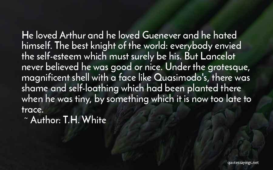 He's Too Nice Quotes By T.H. White