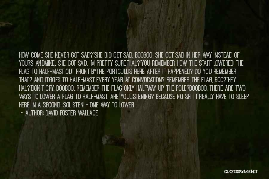 Hey There Boo Boo Quotes By David Foster Wallace