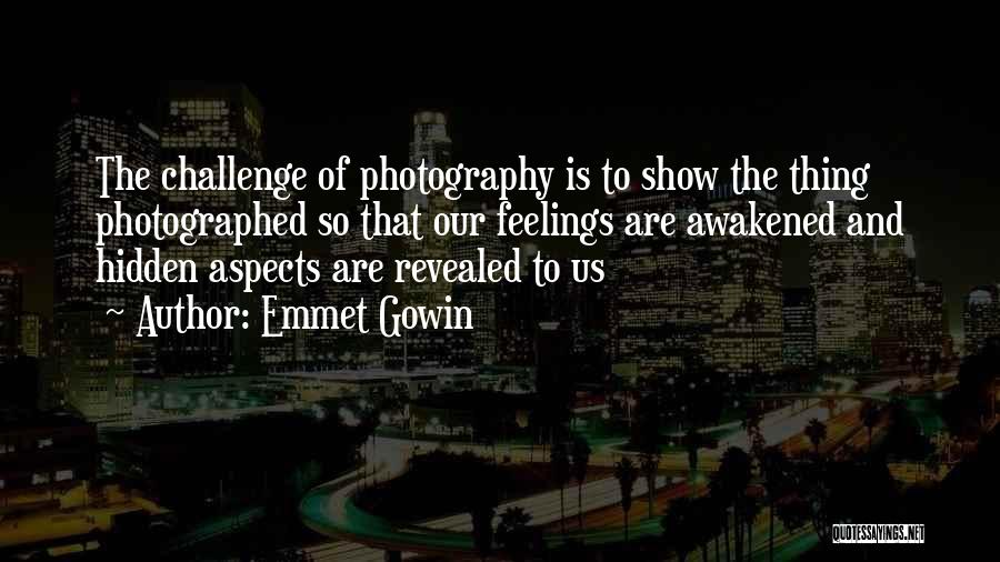 Hidden Feelings For Someone Quotes By Emmet Gowin