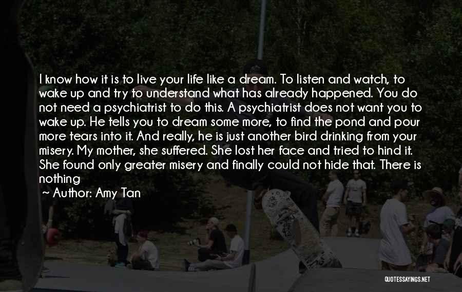 Hide The Tears Quotes By Amy Tan