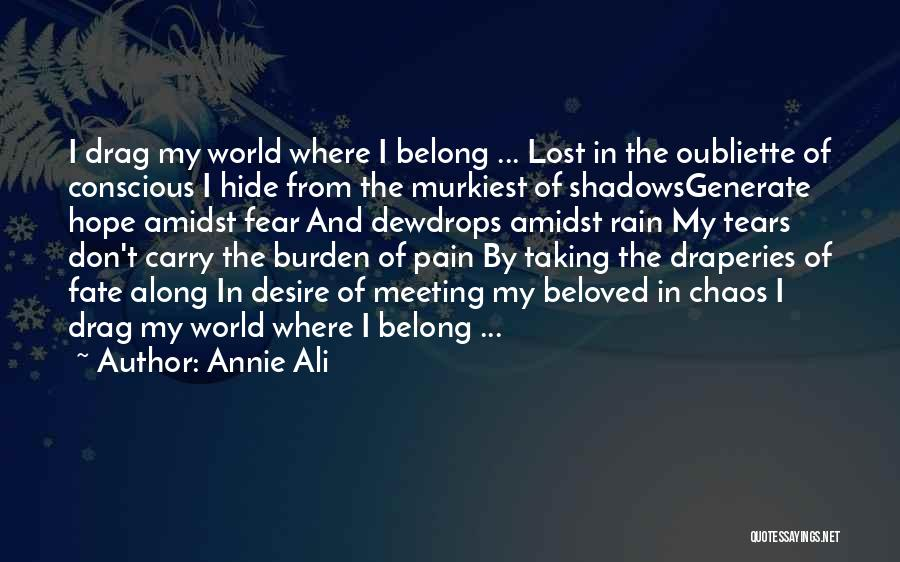 Hide The Tears Quotes By Annie Ali