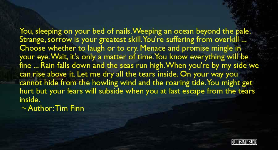 Hide The Tears Quotes By Tim Finn