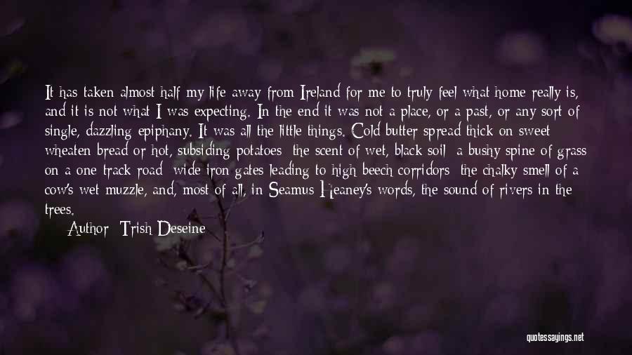 High Road Quotes By Trish Deseine