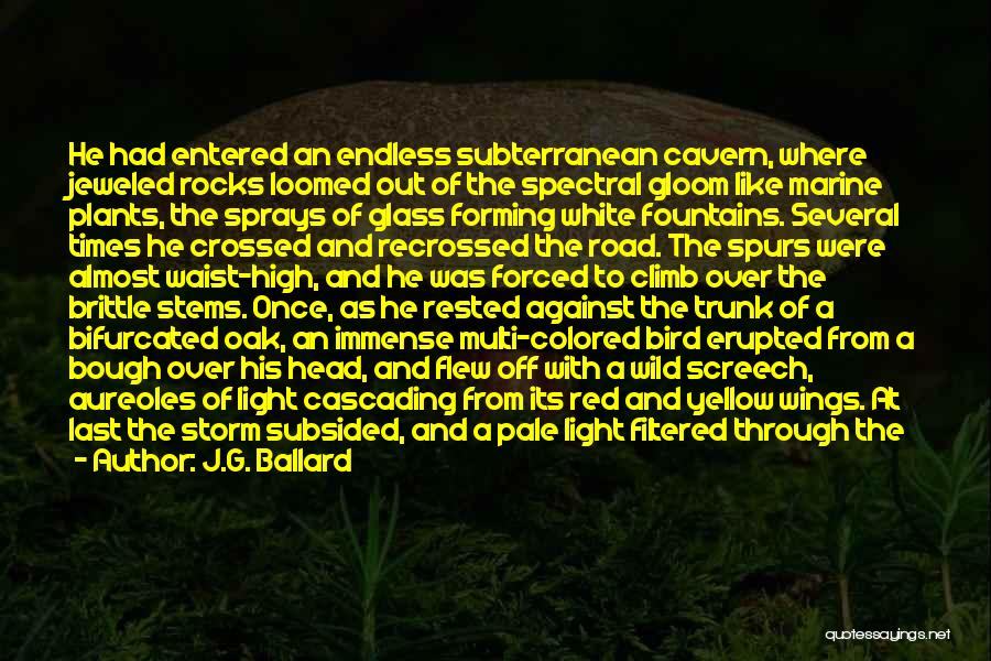 High Times Quotes By J.G. Ballard