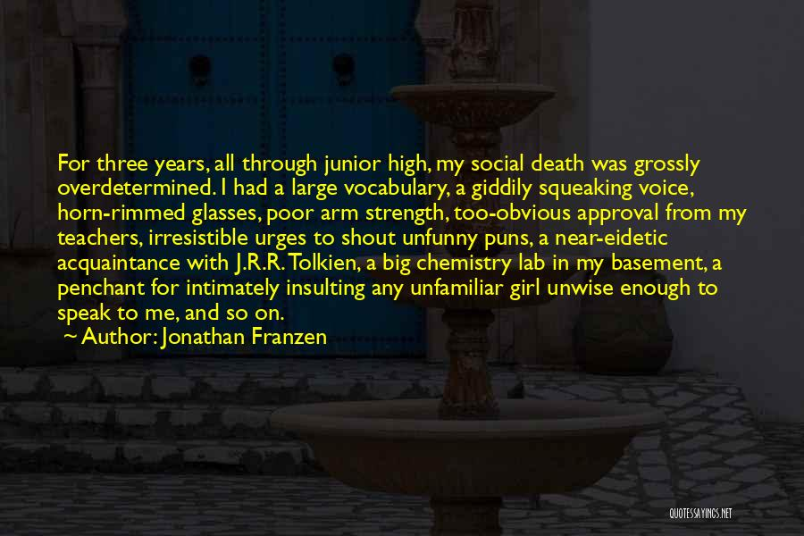 High Voice Quotes By Jonathan Franzen