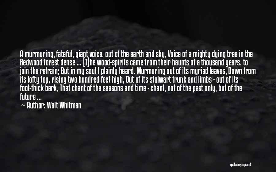 High Voice Quotes By Walt Whitman