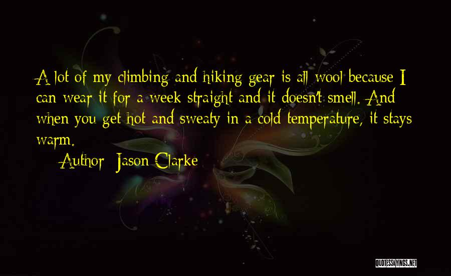 Hiking Climbing Quotes By Jason Clarke