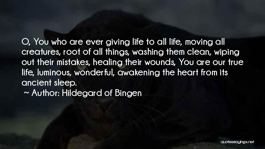 Hildegard Of Bingen Quotes 1859798