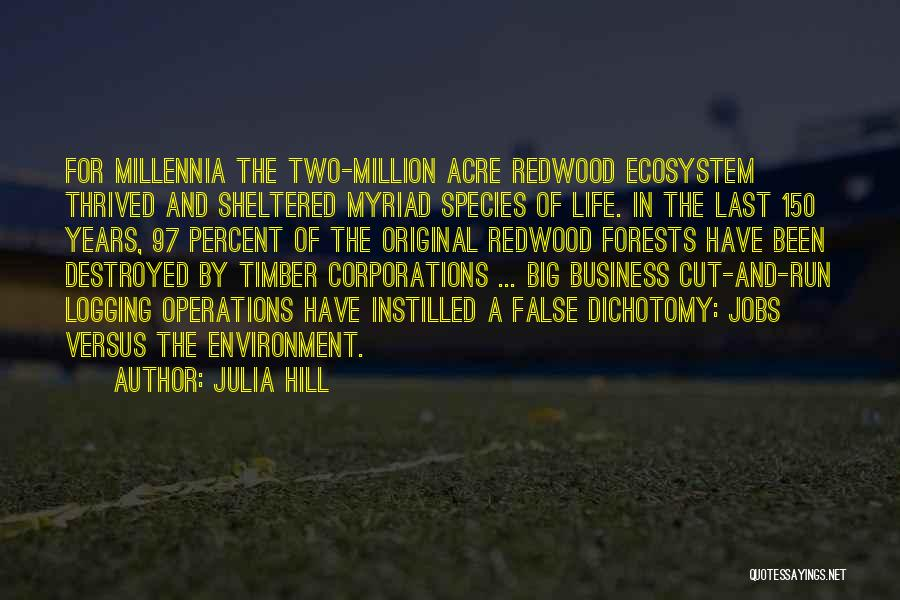Hill Running Quotes By Julia Hill