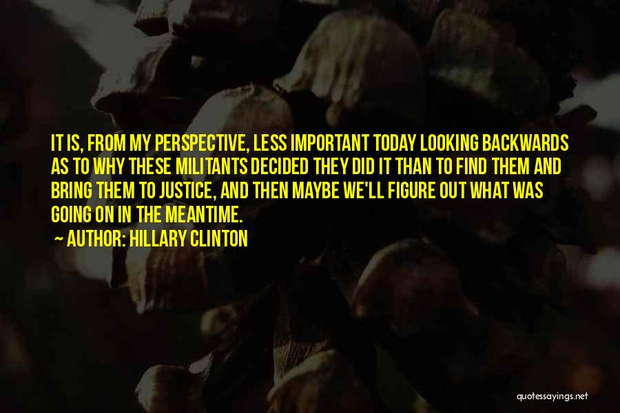 Hillary Clinton Quotes 344495