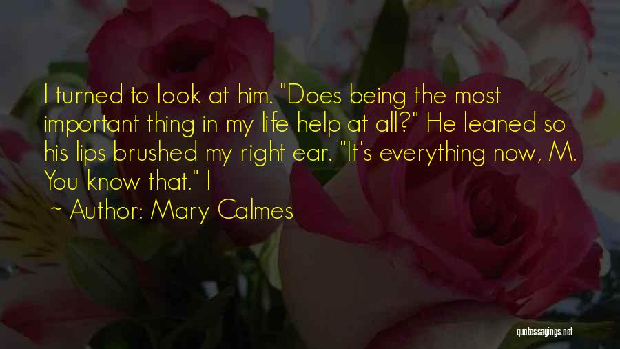 Him Being My Everything Quotes By Mary Calmes