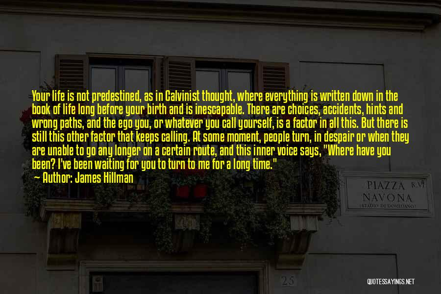 Hints Of Life Quotes By James Hillman