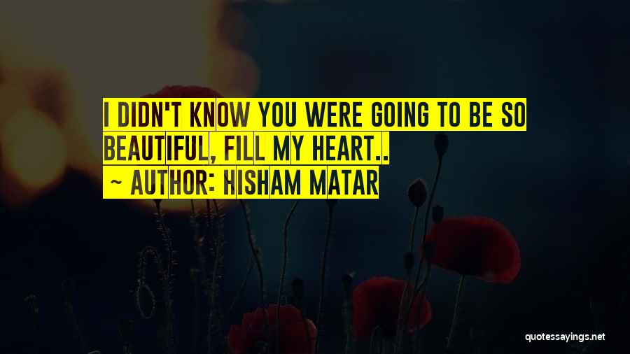 Hisham Matar Quotes 186126