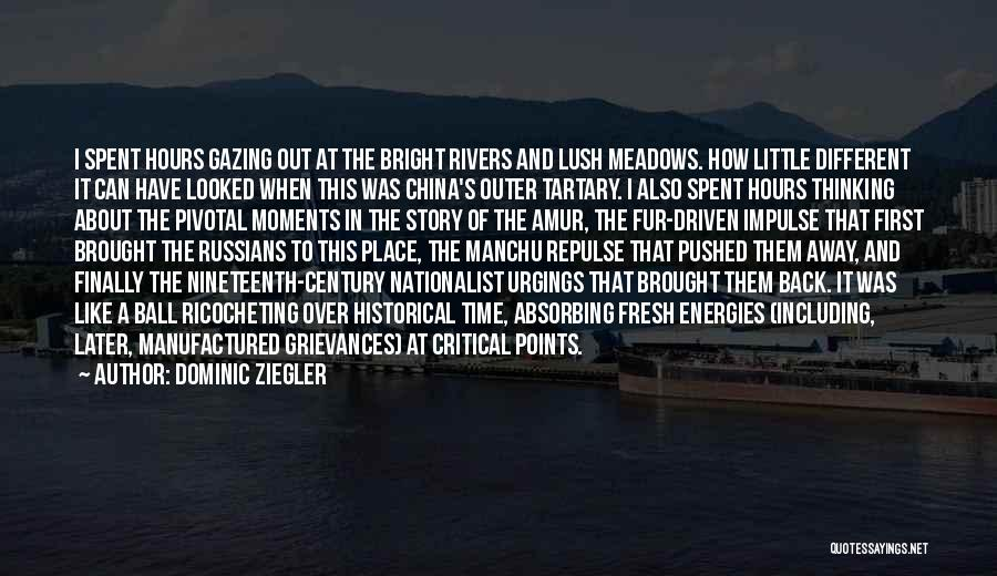 Historical Moments Quotes By Dominic Ziegler