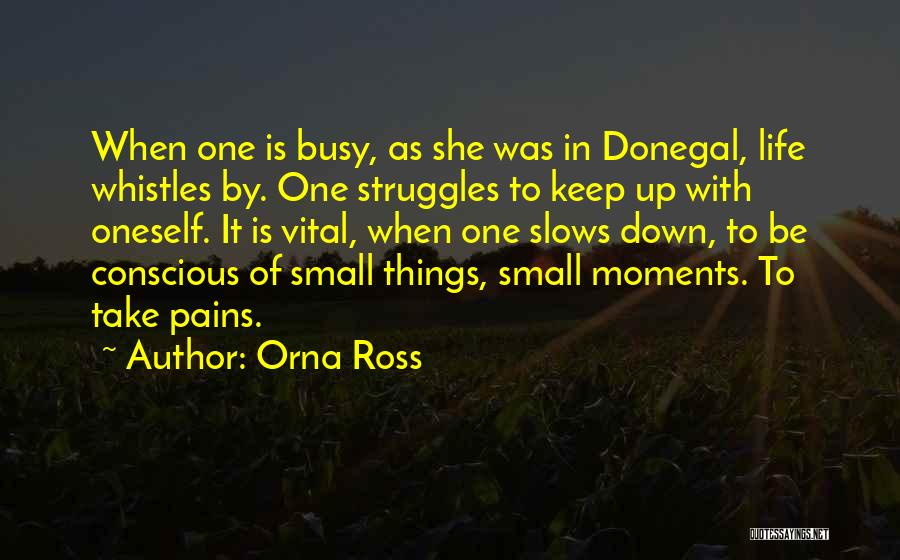 Historical Moments Quotes By Orna Ross