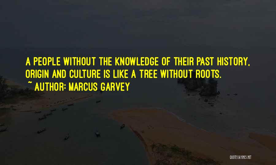 History And Knowledge Quotes By Marcus Garvey