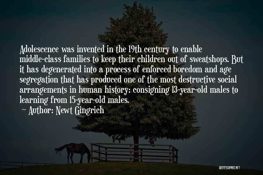 History And Learning Quotes By Newt Gingrich