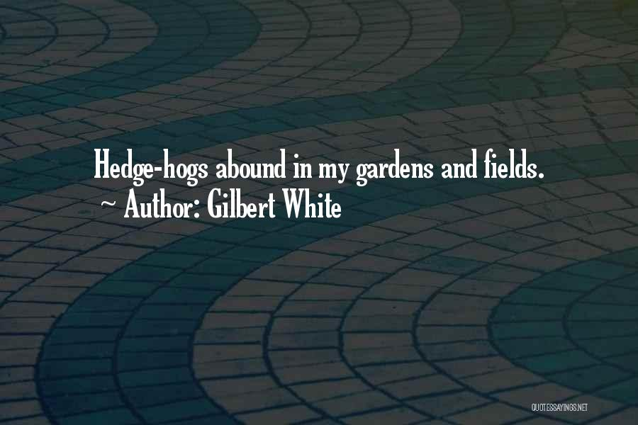 Hogs Quotes By Gilbert White