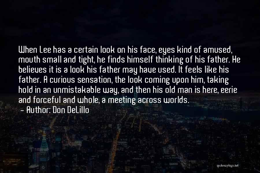 Hold Him Tight Quotes By Don DeLillo