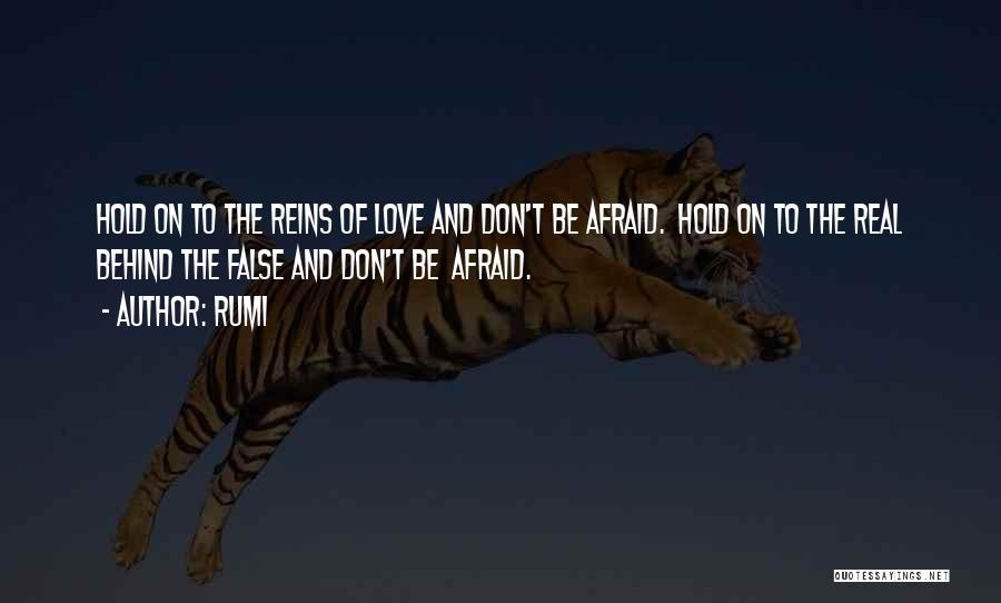 Hold Onto What You Love Quotes By Rumi