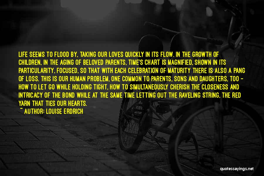 Holding Tight Quotes By Louise Erdrich