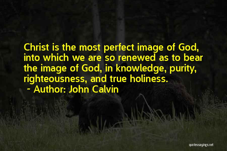 Holiness And Righteousness Quotes By John Calvin