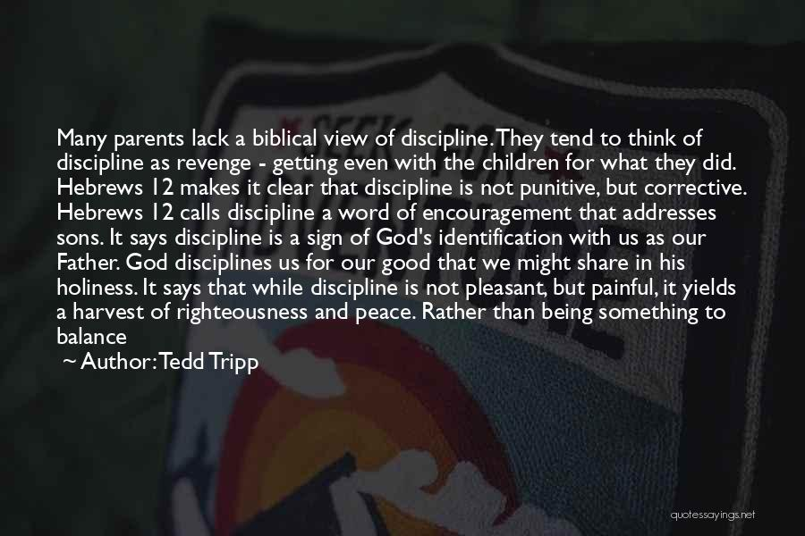 Holiness And Righteousness Quotes By Tedd Tripp