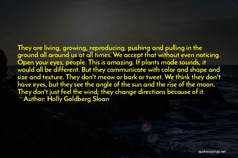 Holly Goldberg Sloan Quotes 1095558