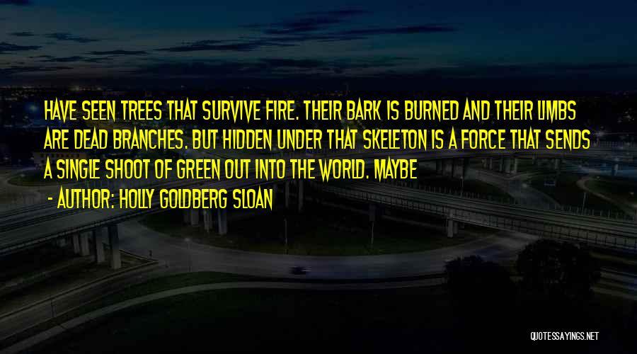 Holly Goldberg Sloan Quotes 2086240