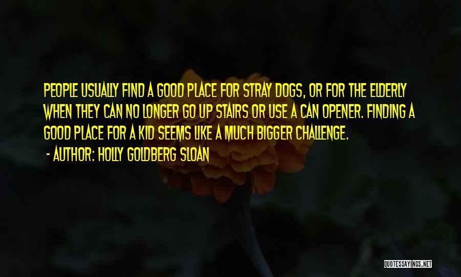 Holly Goldberg Sloan Quotes 712812