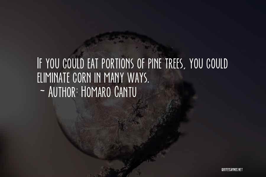 Homaro Cantu Quotes 2211933