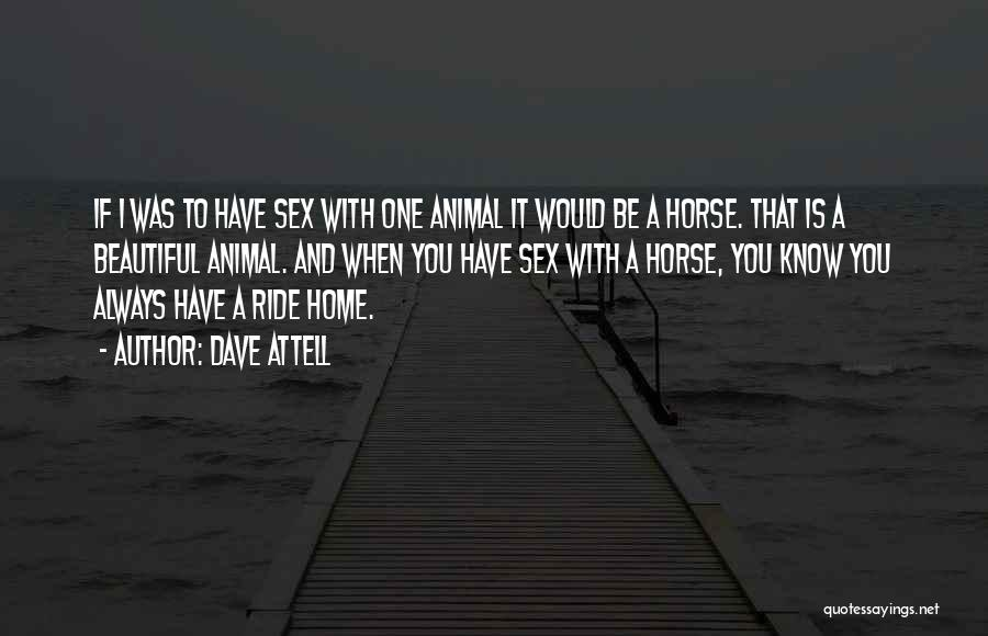 Home Is Beautiful Quotes By Dave Attell